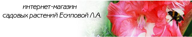 Интернет Магазин Садовых Растений Есиповой Л